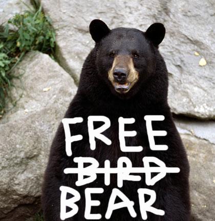 freebear
