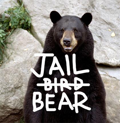 jailbear