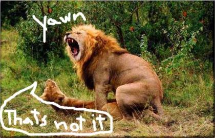 lion-sex